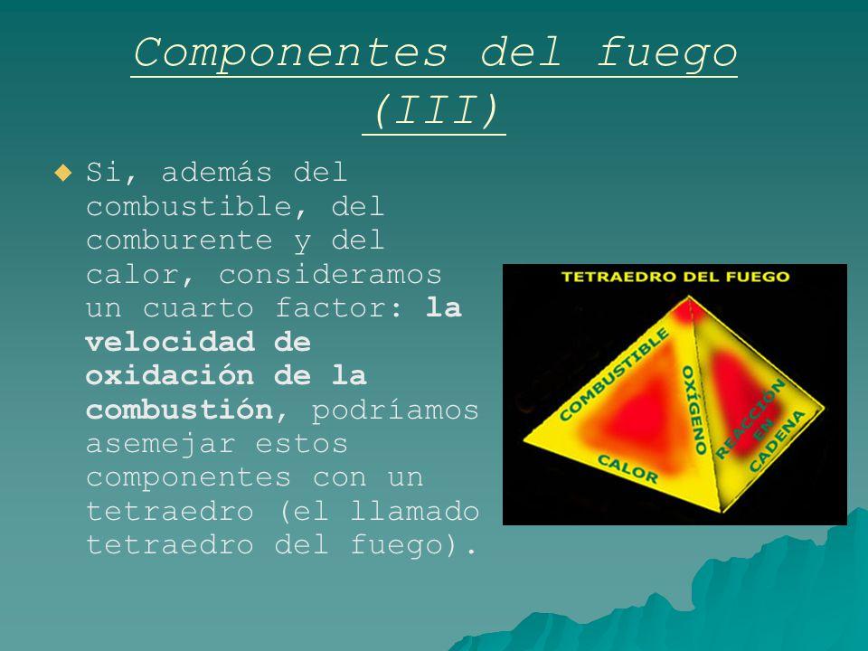 Componentes del fuego (III)