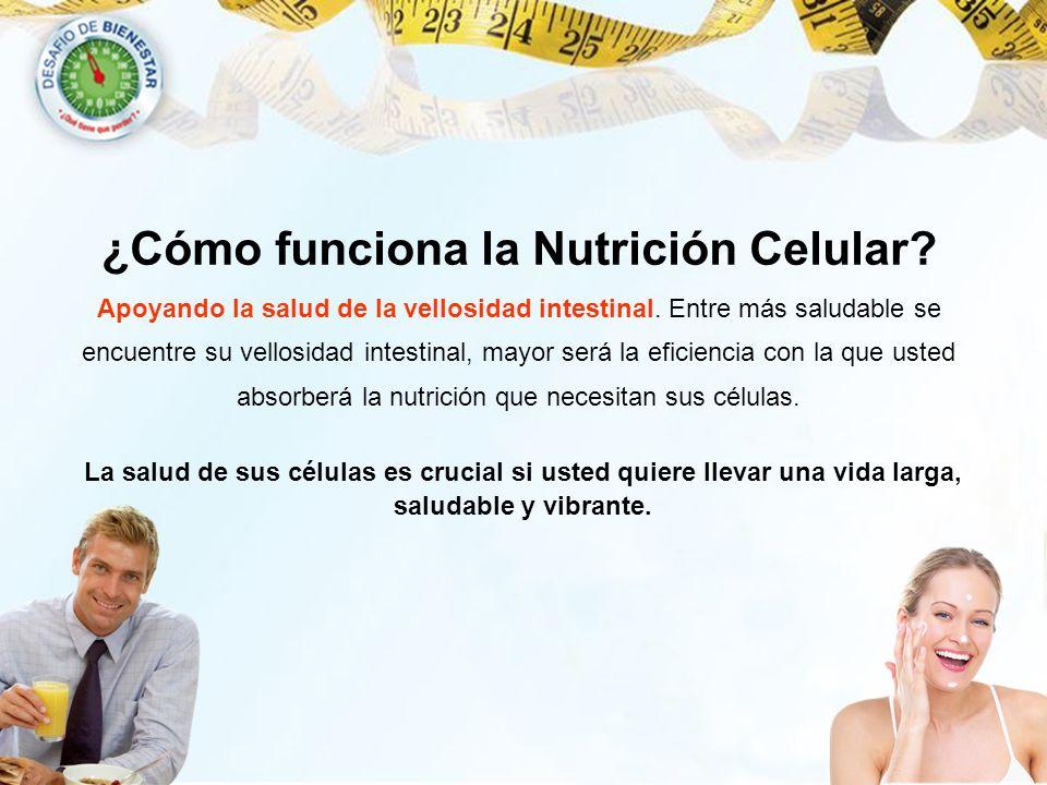 ¿Cómo funciona la Nutrición Celular