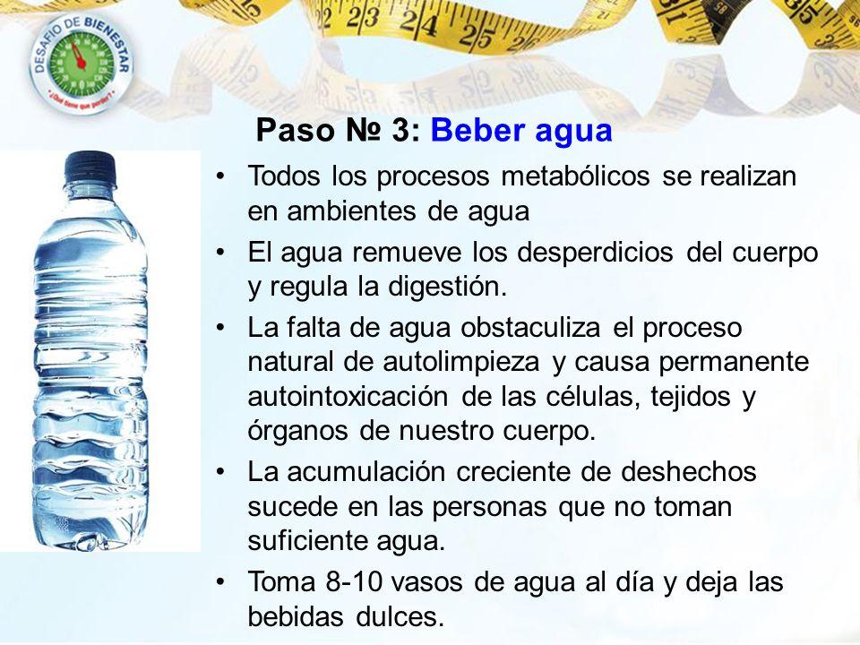 Paso № 3: Beber agua Todos los procesos metabólicos se realizan en ambientes de agua.