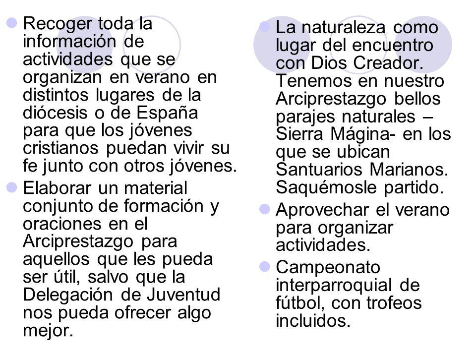 Recoger toda la información de actividades que se organizan en verano en distintos lugares de la diócesis o de España para que los jóvenes cristianos puedan vivir su fe junto con otros jóvenes.