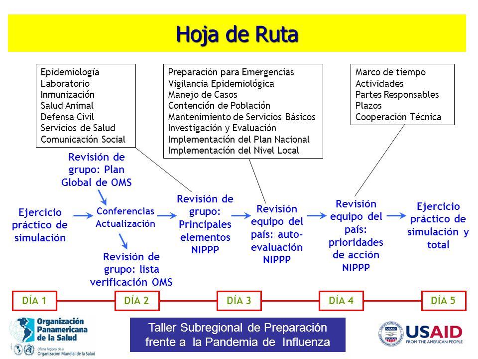 Hoja de Ruta Epidemiología. Laboratorio. Inmunización. Salud Animal. Defensa Civil. Servicios de Salud.