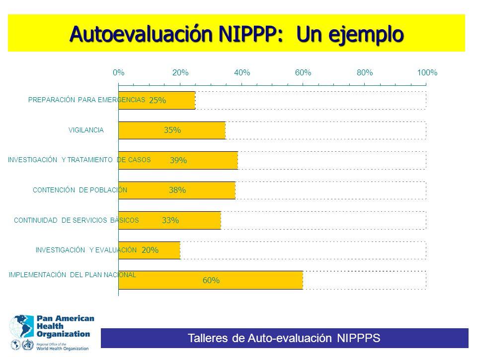 Autoevaluación NIPPP: Un ejemplo