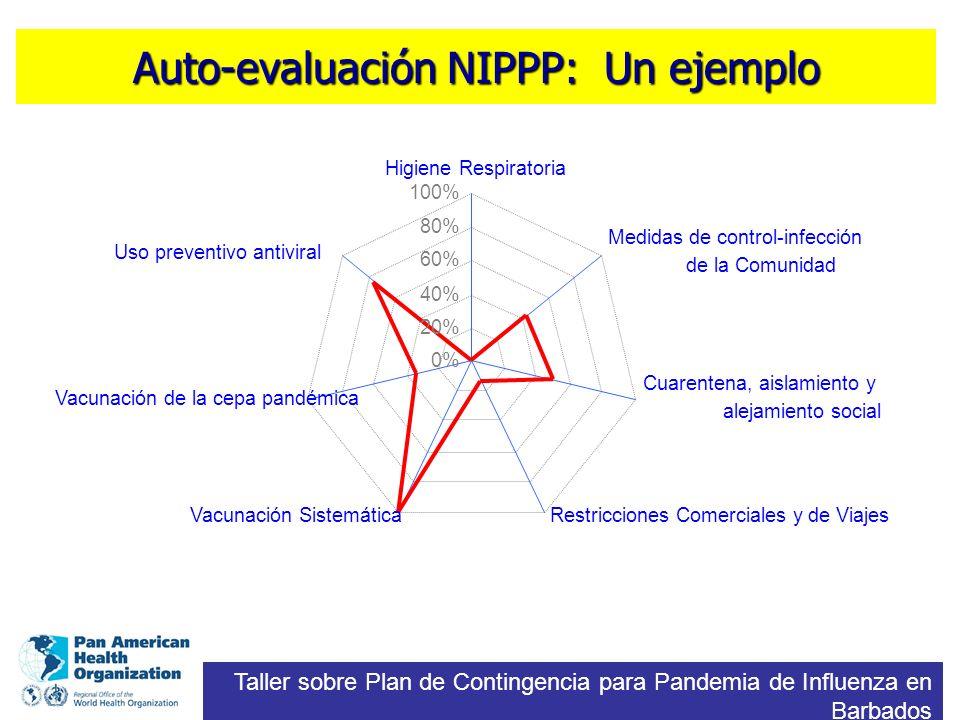 Auto-evaluación NIPPP: Un ejemplo