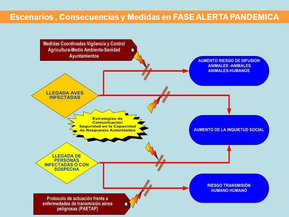 Escenarios , Consecuencias y Medidas en FASE ALERTA PANDEMICA