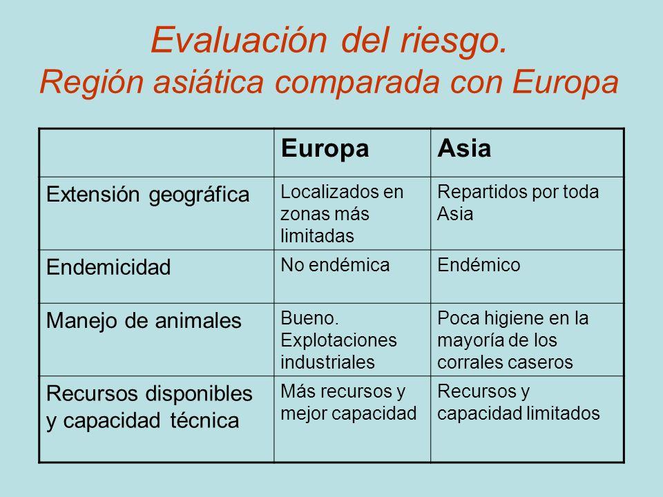 Evaluación del riesgo. Región asiática comparada con Europa