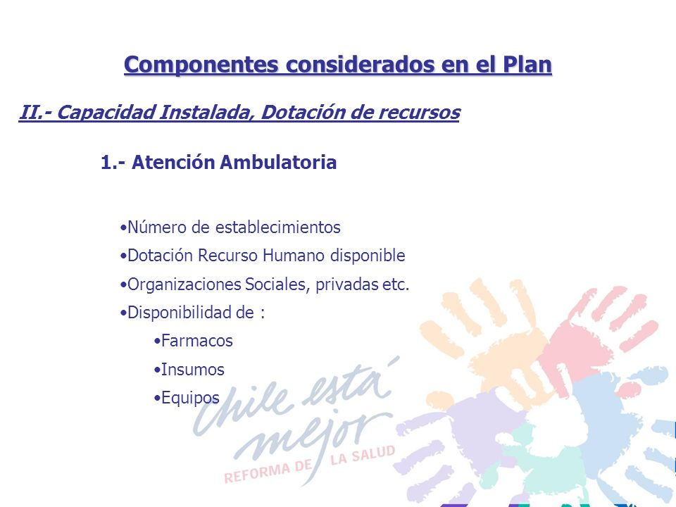 Componentes considerados en el Plan