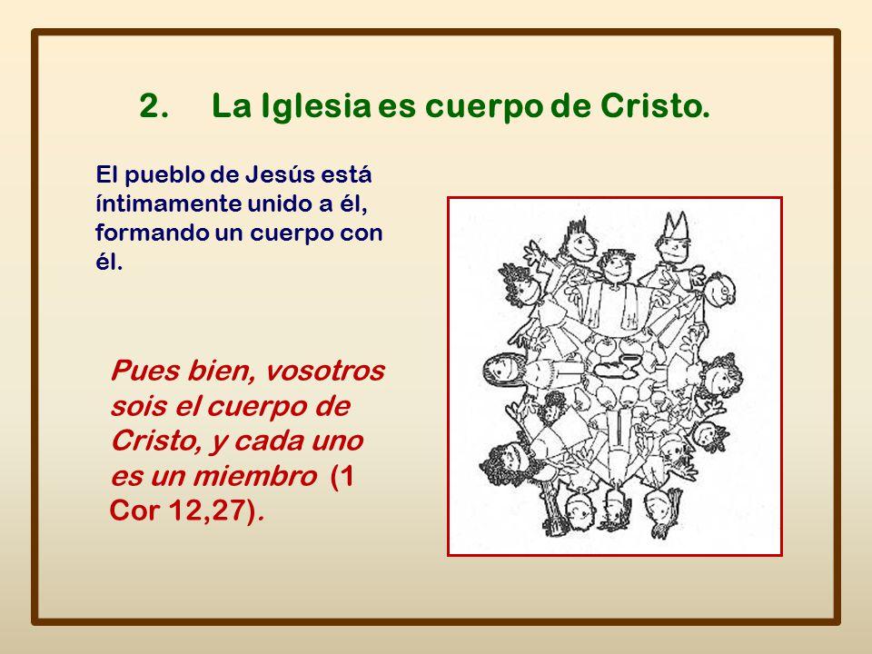 2. La Iglesia es cuerpo de Cristo.