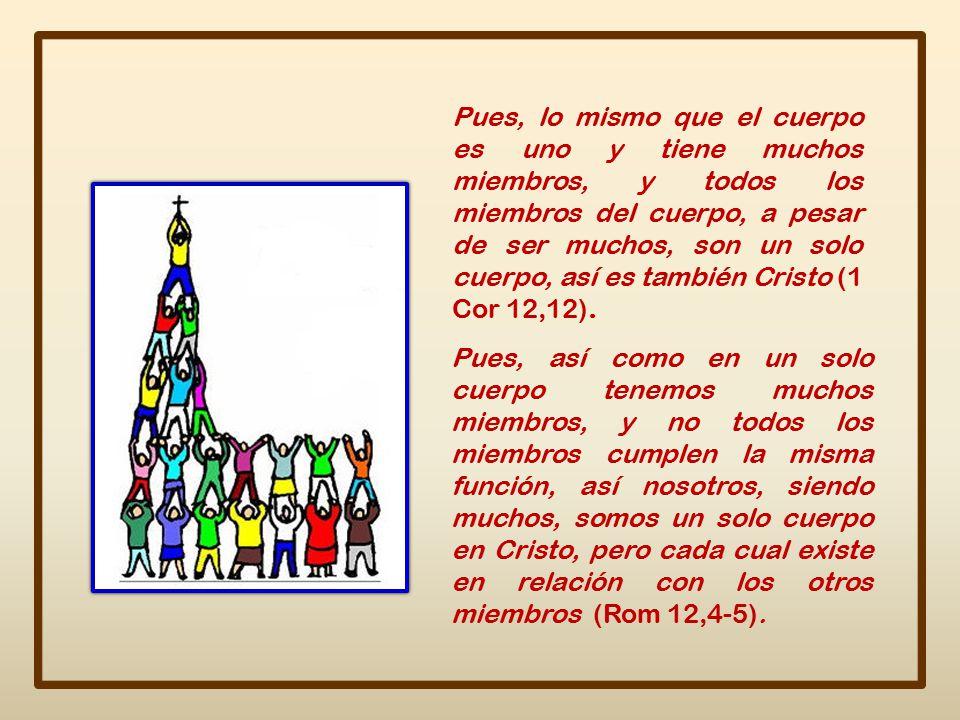 Pues, lo mismo que el cuerpo es uno y tiene muchos miembros, y todos los miembros del cuerpo, a pesar de ser muchos, son un solo cuerpo, así es también Cristo (1 Cor 12,12).