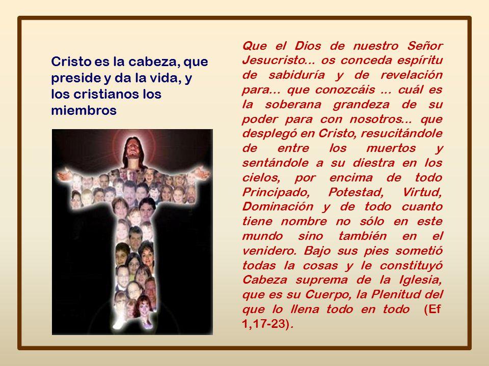 Que el Dios de nuestro Señor Jesucristo