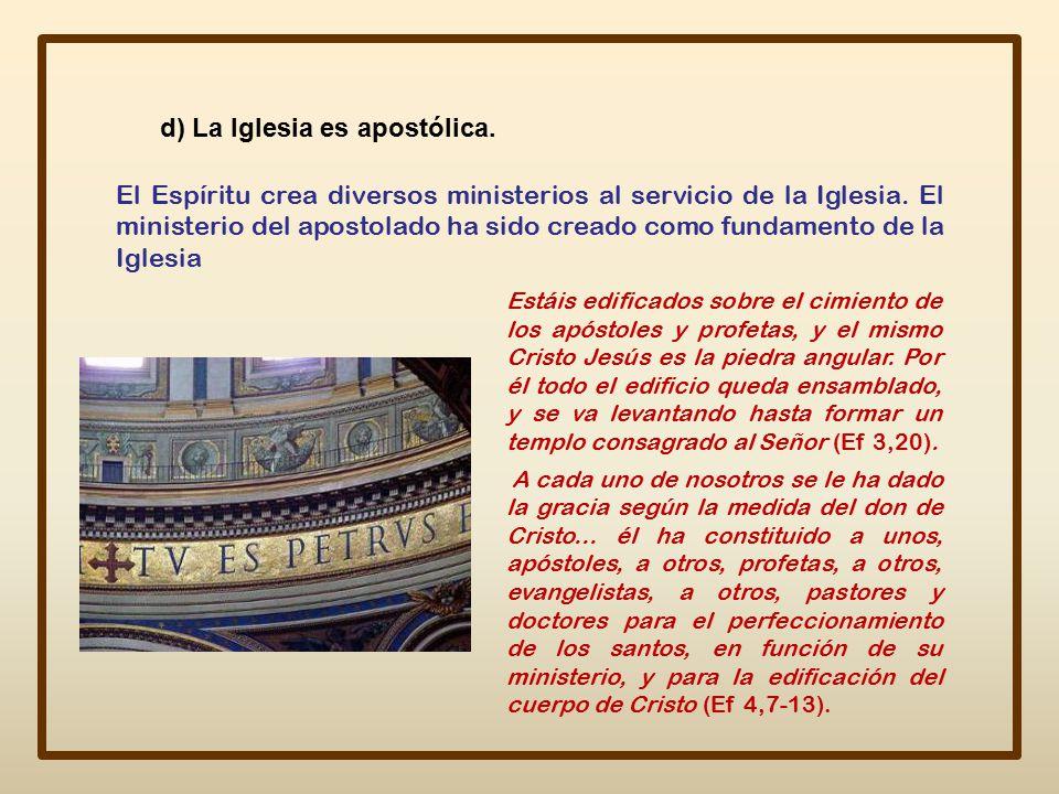 d) La Iglesia es apostólica.