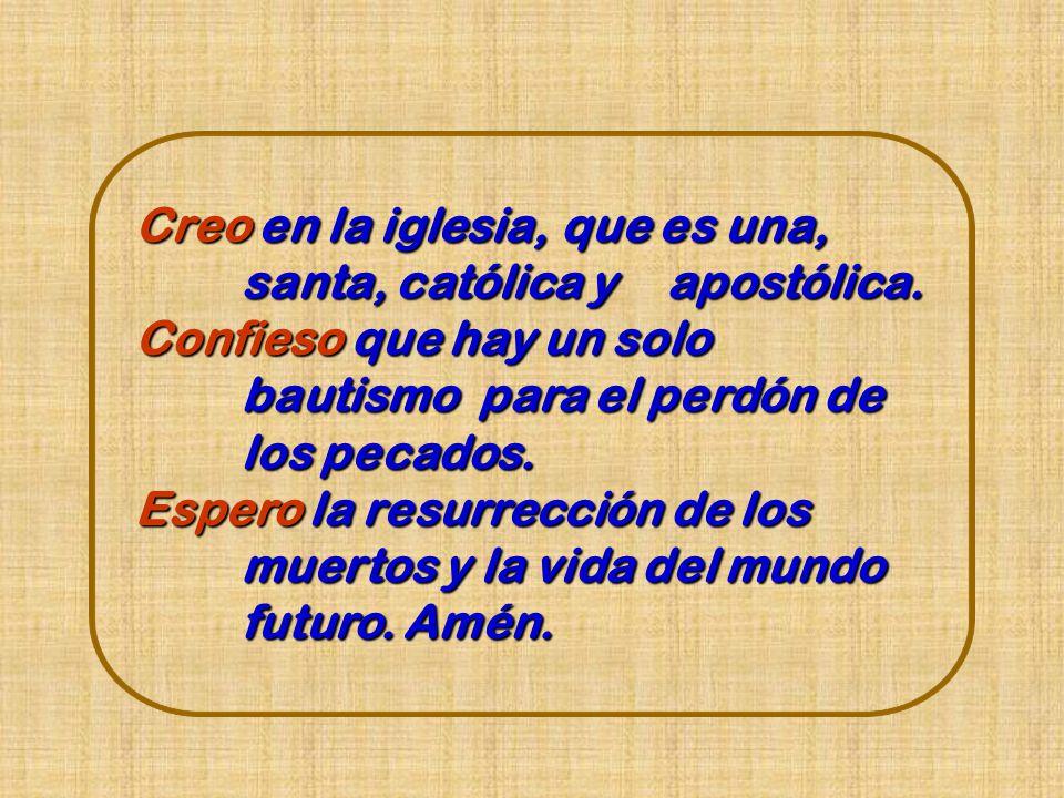 Creo en la iglesia, que es una, santa, católica y apostólica.