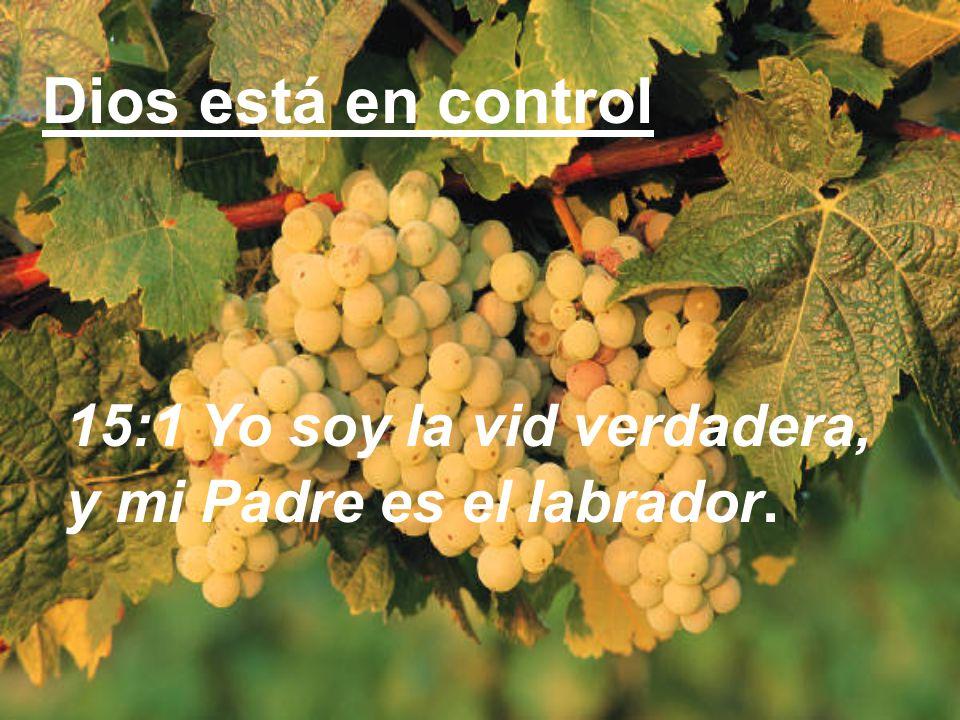 Dios está en control 15:1 Yo soy la vid verdadera,