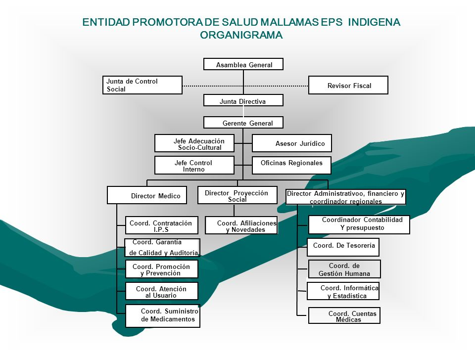 ENTIDAD PROMOTORA DE SALUD MALLAMAS EPS INDIGENA ORGANIGRAMA