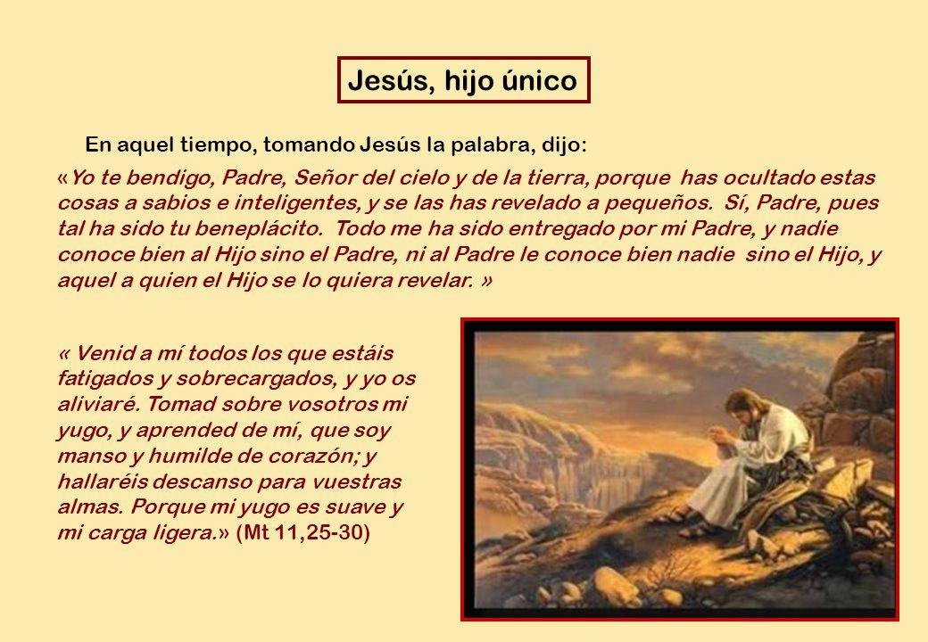 En aquel tiempo, tomando Jesús la palabra, dijo: