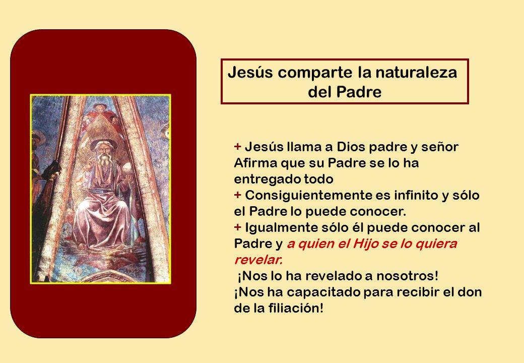 Jesús comparte la naturaleza