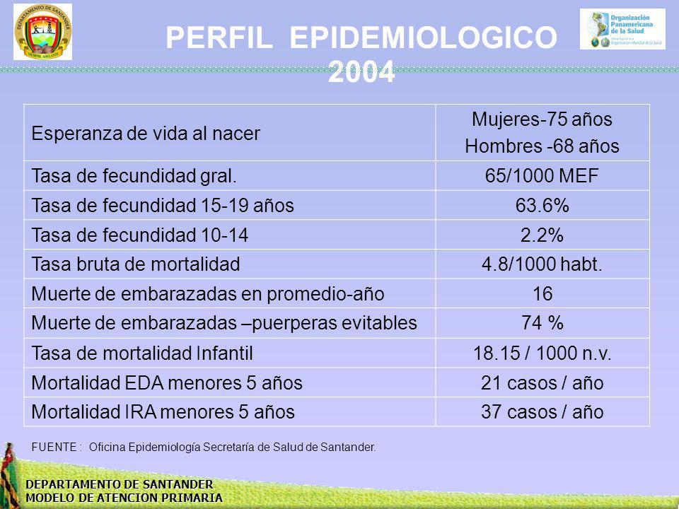 PERFIL EPIDEMIOLOGICO 2004