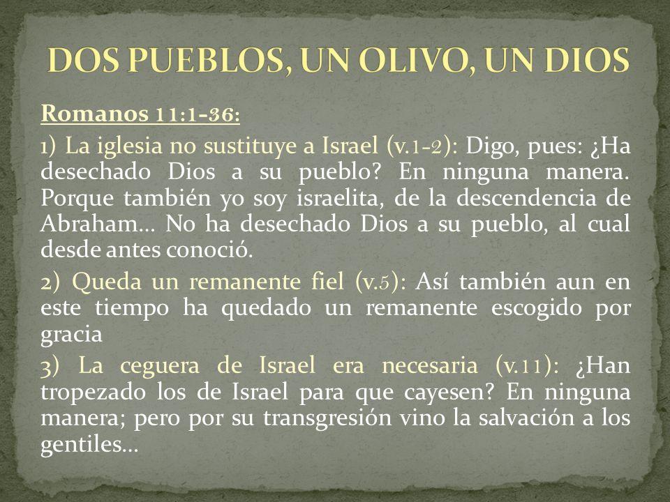 DOS PUEBLOS, UN OLIVO, UN DIOS