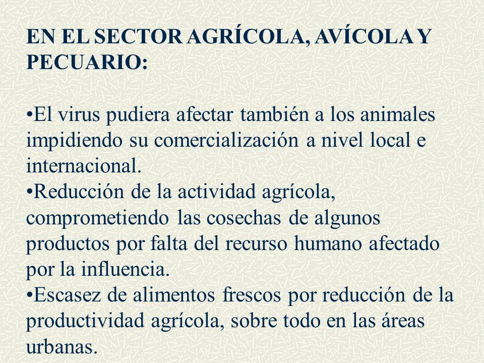 EN EL SECTOR AGRÍCOLA, AVÍCOLA Y PECUARIO: