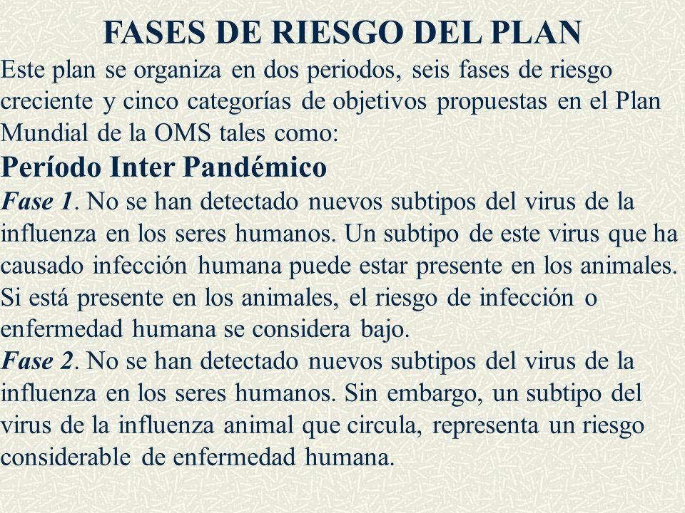 FASES DE RIESGO DEL PLAN