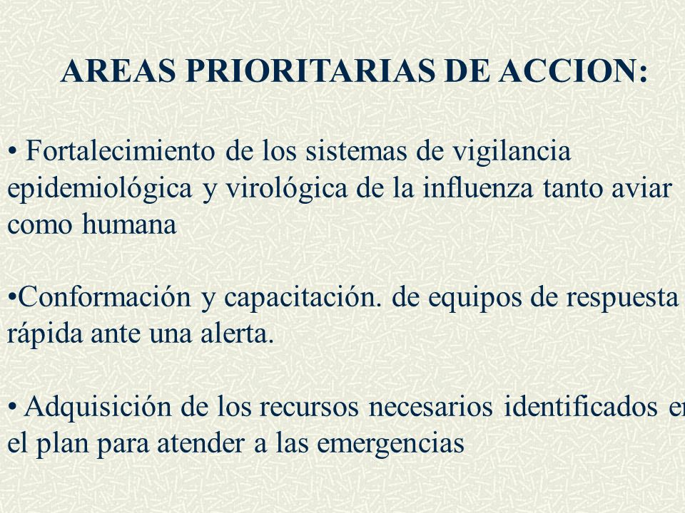 AREAS PRIORITARIAS DE ACCION: