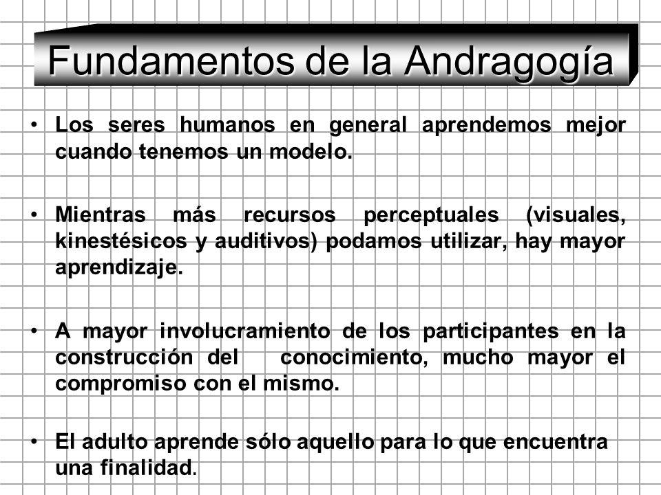 Fundamentos de la Andragogía