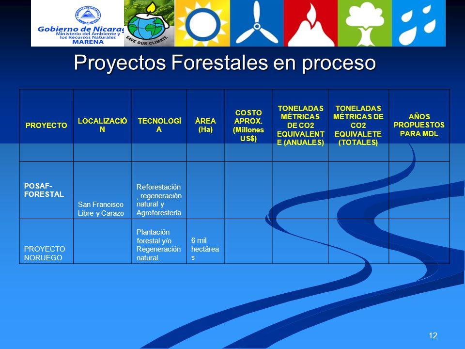 Proyectos Forestales en proceso