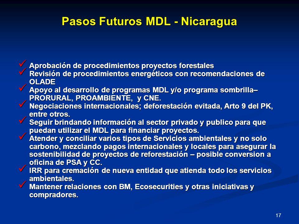 Pasos Futuros MDL - Nicaragua