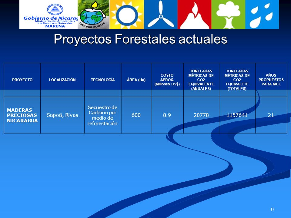 Proyectos Forestales actuales