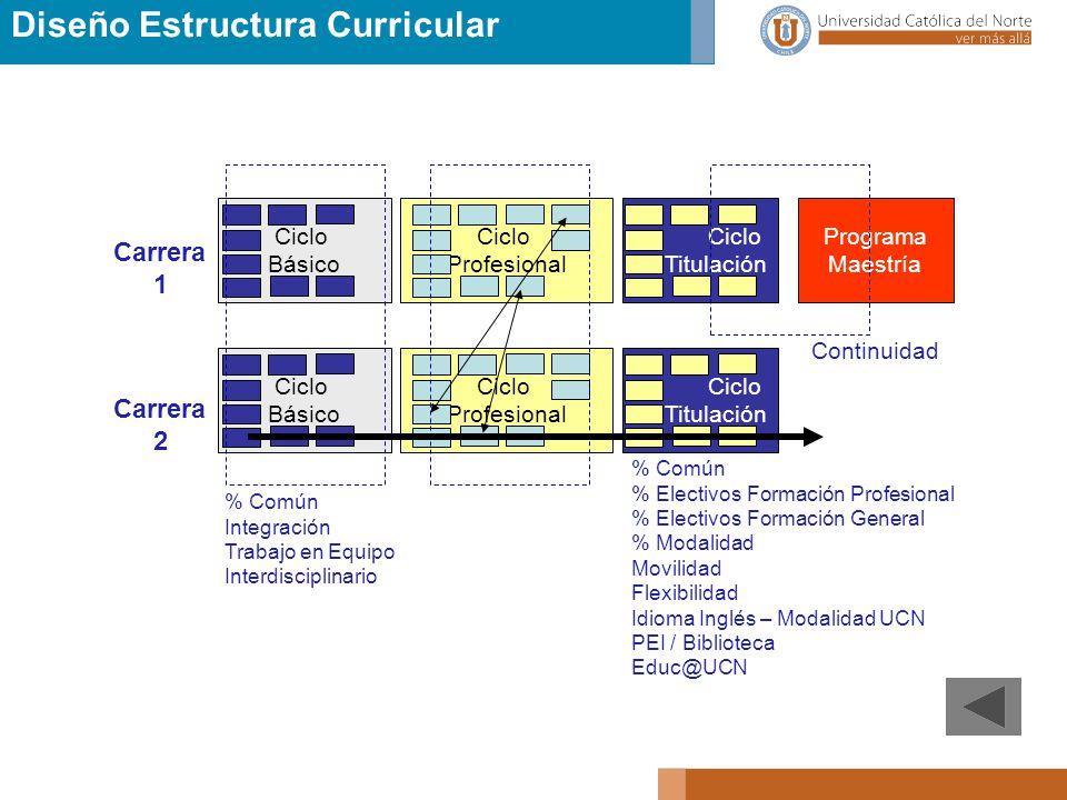 Diseño Estructura Curricular