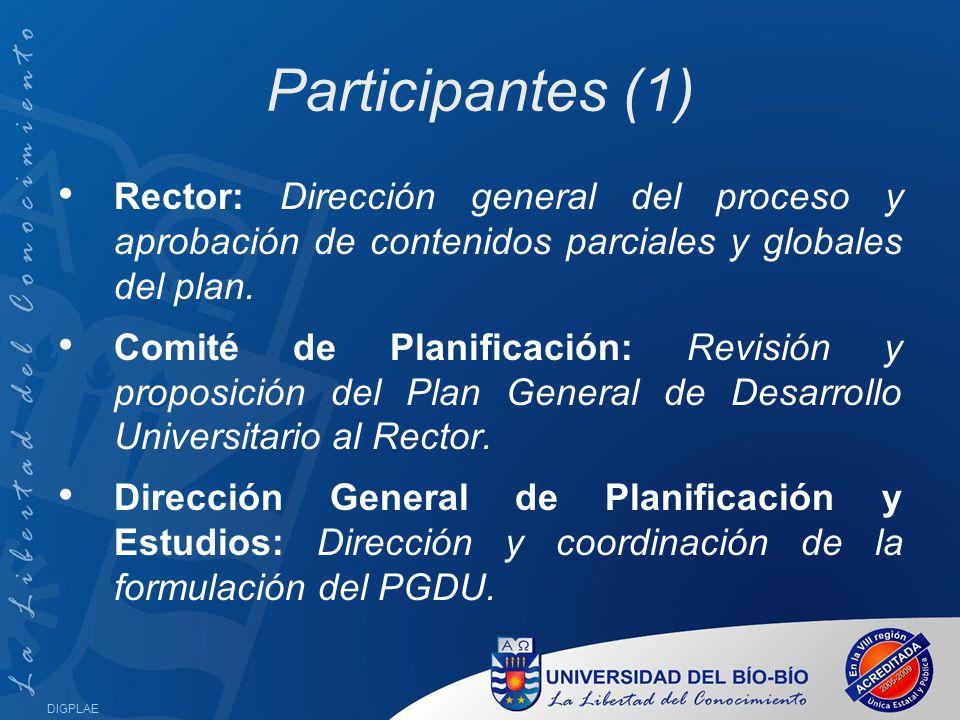 Participantes (1) Rector: Dirección general del proceso y aprobación de contenidos parciales y globales del plan.