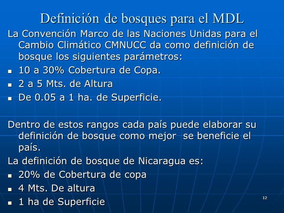 Definición de bosques para el MDL