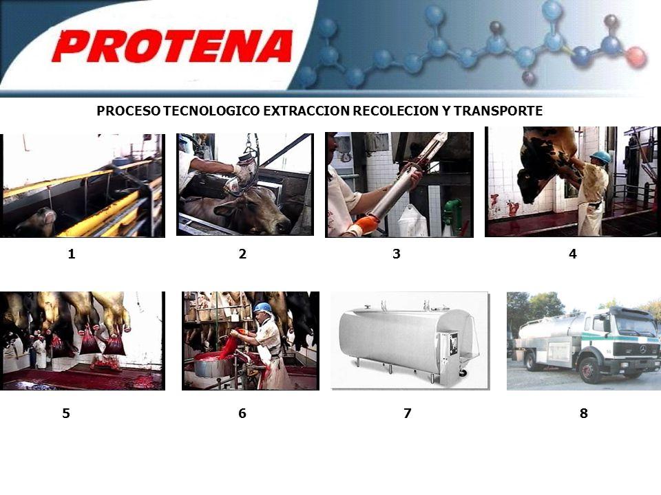 PROCESO TECNOLOGICO EXTRACCION RECOLECION Y TRANSPORTE