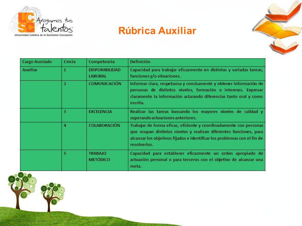 Rúbrica Auxiliar Cargo Asociado Cmcia Competencia Definición Auxiliar