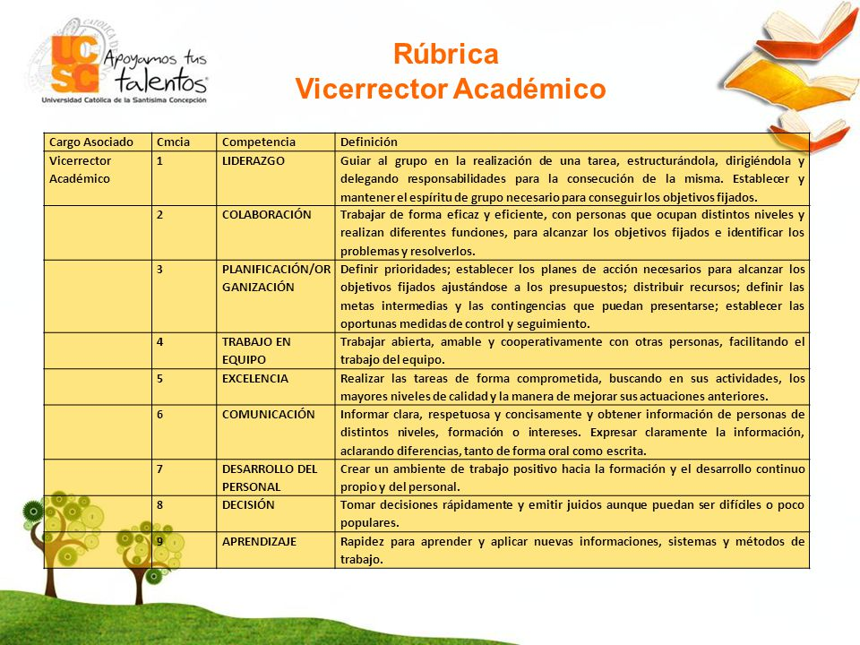 Vicerrector Académico