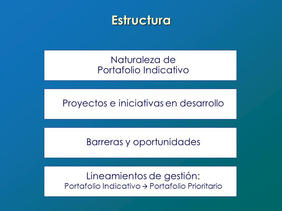 Estructura Naturaleza de Portafolio Indicativo