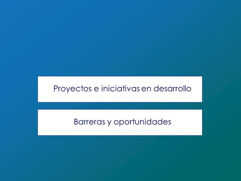 Proyectos e iniciativas en desarrollo