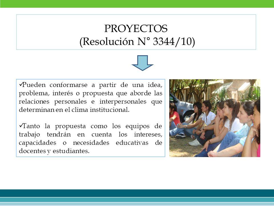 PROYECTOS (Resolución N° 3344/10)