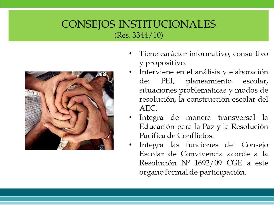 CONSEJOS INSTITUCIONALES