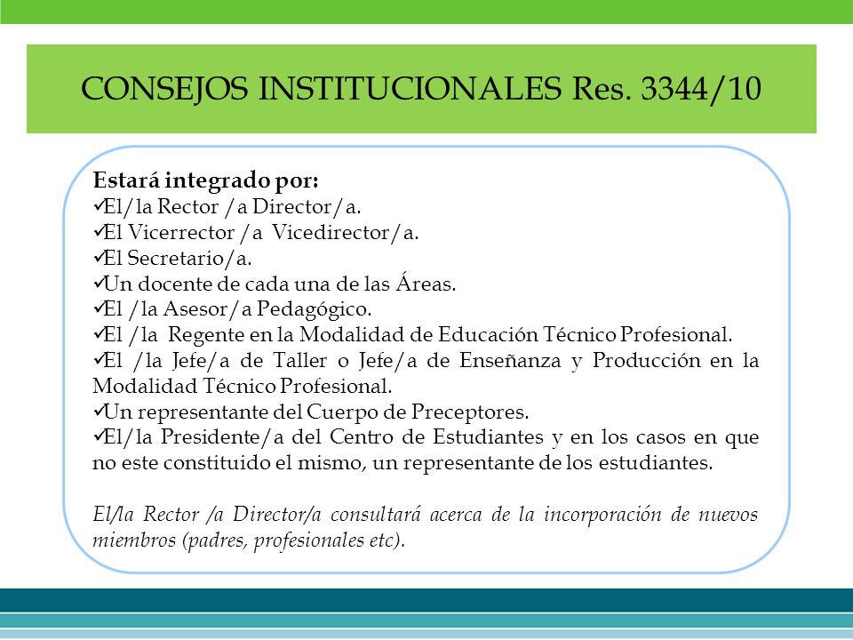 CONSEJOS INSTITUCIONALES Res. 3344/10