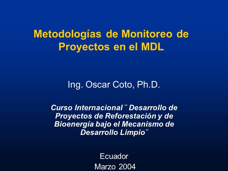 Metodologías de Monitoreo de Proyectos en el MDL
