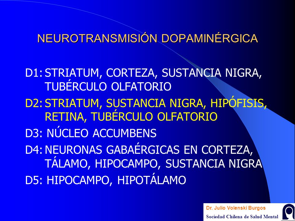 NEUROTRANSMISIÓN DOPAMINÉRGICA