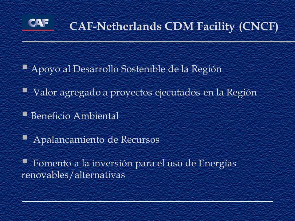 CAF-Netherlands CDM Facility (CNCF)