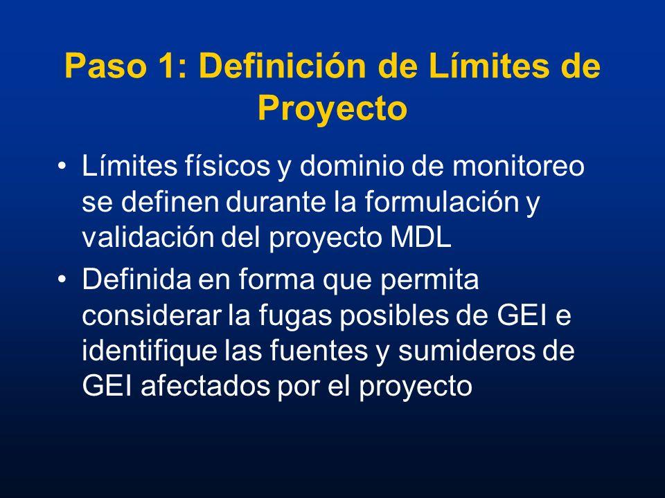 Paso 1: Definición de Límites de Proyecto