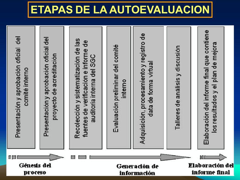 ETAPAS DE LA AUTOEVALUACION