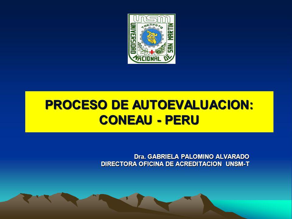PROCESO DE AUTOEVALUACION: CONEAU - PERU