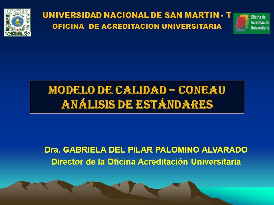 MODELO DE CALIDAD – CONEAU ANÁLISIS DE ESTÁNDARES