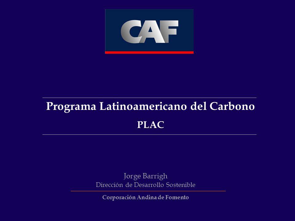 Programa Latinoamericano del Carbono Corporación Andina de Fomento
