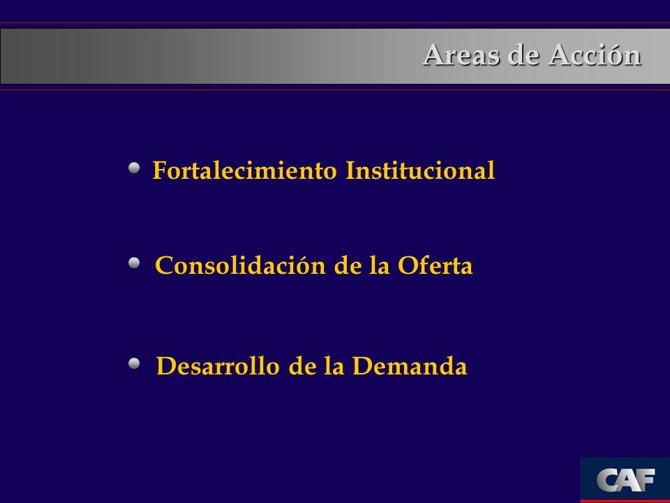 Areas de Acción Fortalecimiento Institucional
