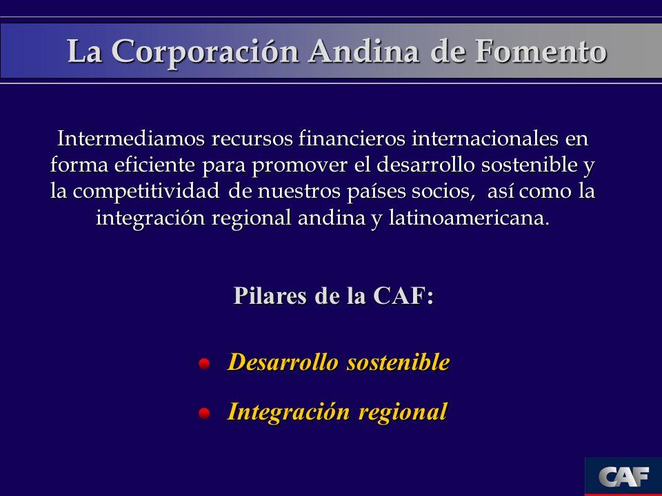 La Corporación Andina de Fomento