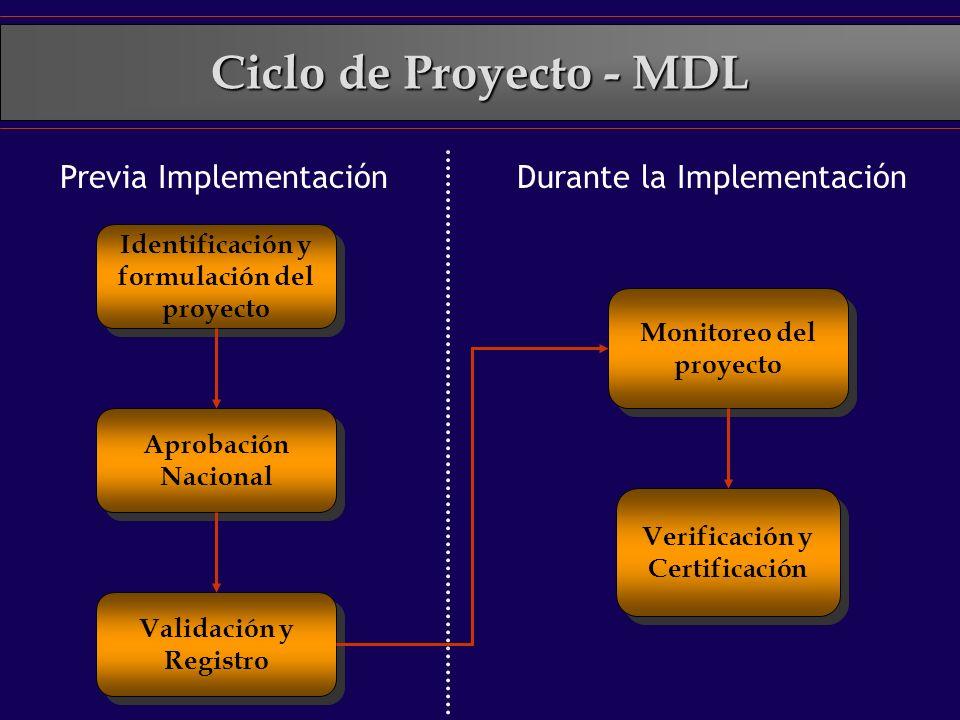 Ciclo de Proyecto - MDL Previa Implementación